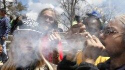 Quiz - Marijuana's Growth in US Drives Breathalyzer Test Technology