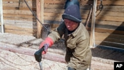FILE - A Northern Korean worker cuts wood in the camp of Dzhalingra in Russian Far East.