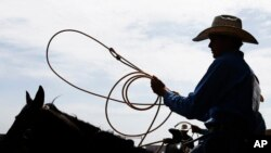 A cowboy waits to enter the arena for the calf roping competition at the International Finals Youth Rodeo, in Shawnee