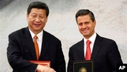 Chủ tịch Trung Quốc Tập Cận Bình và Tổng thống Mexico Enrique Pena Nieto tại Mexico City, ngày 4/6/2013.