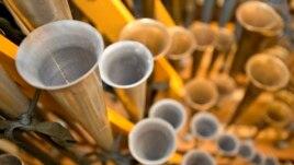 Konkursi i Organos i Kopshteve Longwood