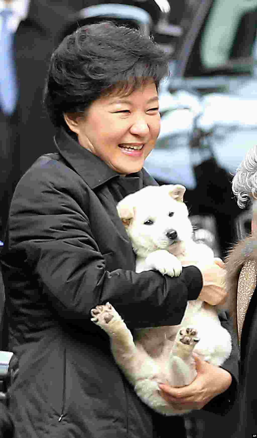 South Korean President Park Geun-hye holds a puppy presented by her neighbor as she leaves her home for the presidential inauguration ceremony in Seoul.