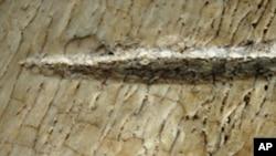 تیزدھار پتھر کے اوزار کے فن کا موجد جنوبی افریقہ ہے: نئی تحقیق