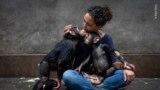 Победителем в номинации &quot;Под водой&quot; стал французский фотограф Лоран Баллеста, который запечатлел трех груперов (рыб из семейства каменных окуней) в процессе нереста. Снимок, названный &quot;Сотворение&quot;, был создан не с первой попытки: фотограф возвращался в одну и ту же бухту на протяжении пяти лет, прежде чем сделать эту фотографию.<br /> <br /> 📸:&nbsp;<b>Laurent Ballesta / Wildlife Photographer of the Year</b>