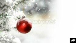 Christmas tree and ball