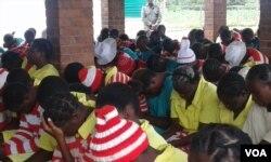 izibotshwa ezixoxe loNkosikazi Emmerson Mnangagwa.
