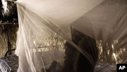 Mother and child lying under the long-lasting insecticidal net that they have just received. Suburb of Niamey, Niger