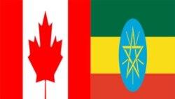 اظهار نگرانی کانادا از استفاده نادرست کمک های خارجی در اتیوپی