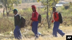 Schoolchildren return home from school after teachers boycotted their lessons, in the capital following a job boycott started via social media platforms, in Harare, July 6, 2016.