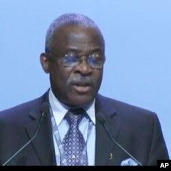 Kanqayo Nwanzi, IFAD