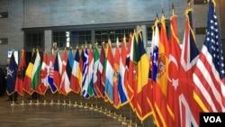 2019年4月3日北约互动论坛上的北约成员国国旗(美国之音黎堡)