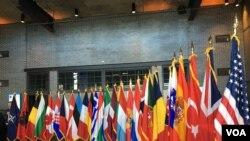 2019年4月3日北約互動論壇上的北約成員國國旗(美國之音黎堡)