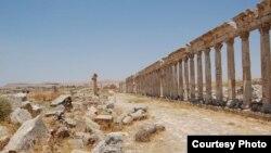 ستون های بقایای شهر باستانی آفامیا