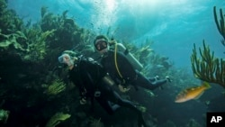 百慕大海底世界