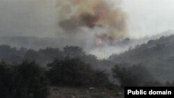 پارک ملی گلستان، قدیمی ترین پارک ملی ایران بارها دچار آتش سوزی شده است