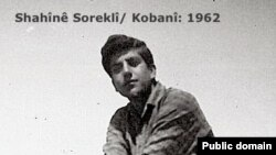 Shahin Sorakli