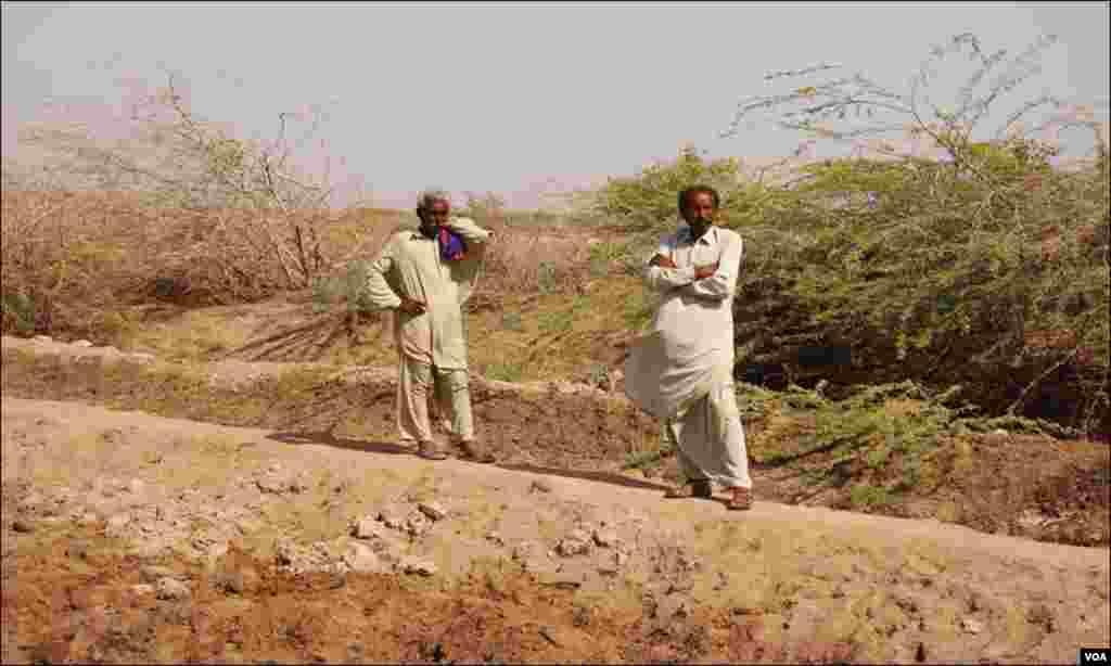 ابان رونجھو کی زیادہ تر آبادی 'کاشتکاری' سے منسلک تھی جو اب 'ماہی گیری' کی طرف منتقل ہوگئی ہے۔ یہاں پینے کا پانی نہیں، نا ہی فصل اگانےکیلئے تازہ پانی ہے۔