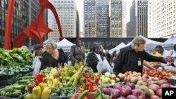 Permintaan akan sayuran segar organik yang ditanam secara lokal semakin meningkat di Amerika (foto: dok.).