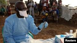 L'écologiste James Koninga prépare à extraire des échantillons de sang et d'organes d'un rongeur Mastomys natalensis dans le village de Jormu dans le sud de la Sierra Leone Février 8 2011. La fièvre de Lassa, du nom de la ville du Nigeria où elle a été identifié pour la première en 1969, fait partie d'une liste américaine des maladies de la «catégorie A»