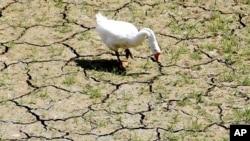 Moçambique atenta a mudanças climáticas