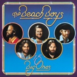 The Beach Boys '15 Big Ones' CD