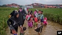 缅甸的罗兴亚穆斯林趟过积水的道路走向设在孟加拉国境内的难民营。(2017年11月17日)