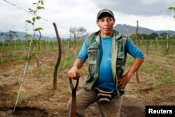 Farmer Ricardo Julca poses while irrigating his crops after a rare rain in the outskirts of Olmos, March 14, 2013.