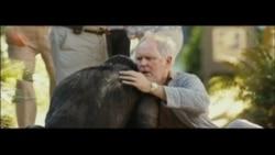 Cine: El regreso de los simios