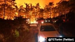حکام کے مطابق جنگلات میں بیشتر مقامات پر لگنے والی آگ پر قابو پا لیا گیا ہے۔ (فائل فوٹو)