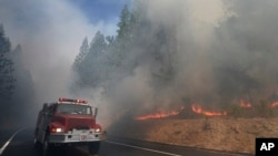 A fire truck drives past burning trees as firefighters battle the Rim Fire near Yosemite National Park, Calif., Aug. 26, 2013.