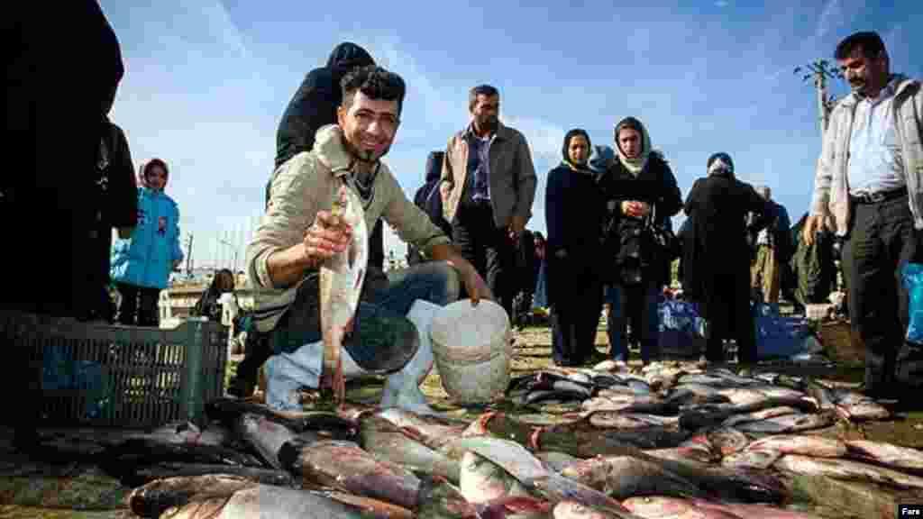 یک ماهی نوروزی دیگر هم هست که روی سفره هفتسین نمیآید و جایش کنار سبزی پلویی است که در بسیاری از مناطق ایران تبدیل به غذای شب یا روز عید شده است. قیمت ماهی عید یکی از دلمشغولیهای هرساله شهروندان است.