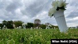 Cveće u pomen žrtava oružanog nasilja