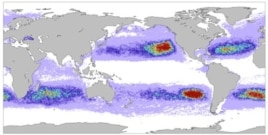 Graphic of floating Tsunami debris