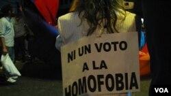 La Federación Argentina de Lesbianas, Gays, Bisexuales y Trans pide que los argentinos manden cartas de apoyo a los diputados.
