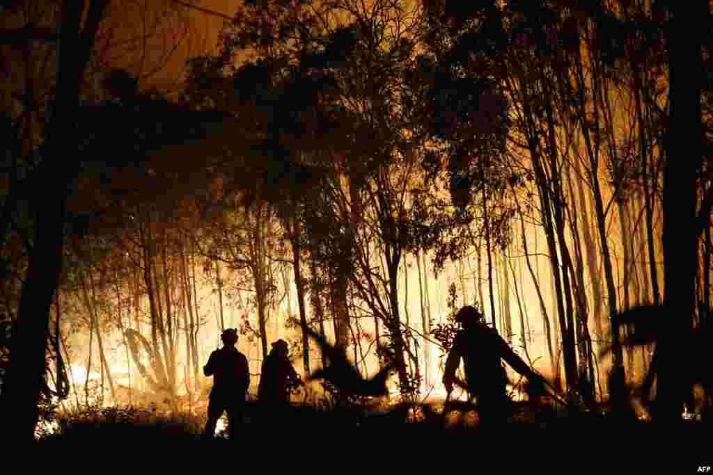 آتشنشانان در حال مبارزه با شعلههای آتش در پارک ملی دیپواتر در کوئینزلند، استرالیا