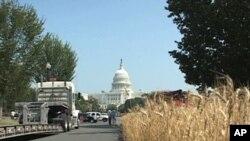 小麦种植者全国协会把麦田带到华盛顿