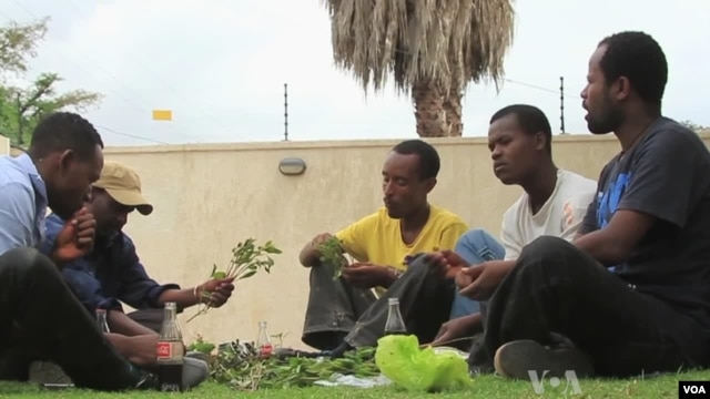 Ethiopian men chew khat at a private residence in Addis Ababa, April 30, 2013.