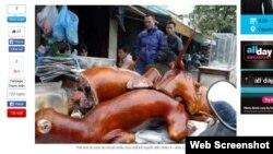 Thịt chó là món ăn khoái khẩu của một số người dân châu Á - Ảnh: L.Q.Phổ (Thanh Niên)