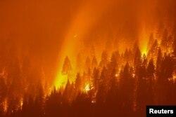 کیلی فورنیا کے جنگلات میں کئی مقامات پر آگ بھڑک رہی ہے۔ 3 اگست 2021