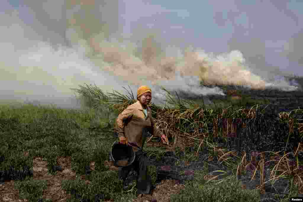 A local resident tries to extinguish a fire burning in Ogan Ilir, near Palembang, South Sumatra, Indonesia in this photo taken by Antara Foto.