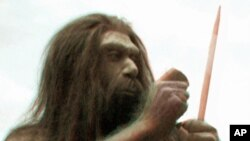 ابتدائی انسانی نسلیں گفتگو کی صلاحیت رکھتی تھیں، تحقیق