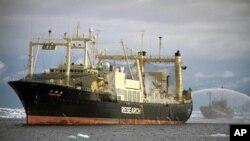 Kapal Sea Shepherd Conservation Society di belakang kapal pabrik Jepang Nisshin Maru (kiri) untuk menghalangi jalur mereka di Samudera Selatan. (Foto: Dok)