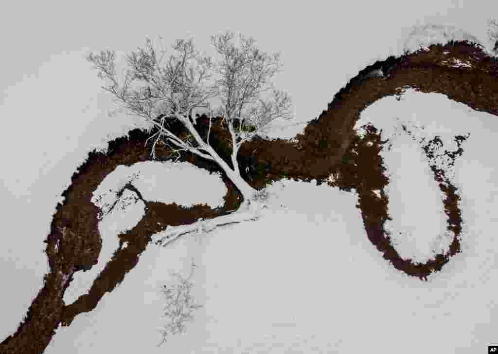A tree lies over a small creek after heavy snow falls in the Taunus region near Frankfurt, Germany.