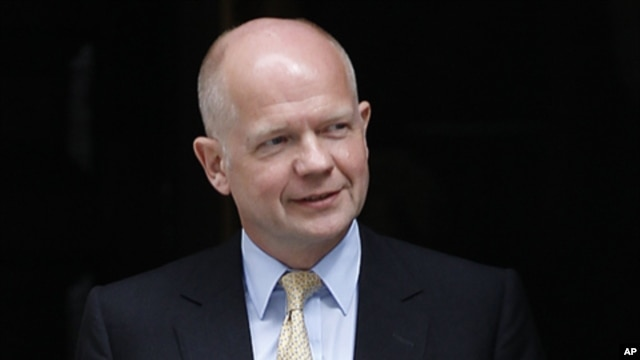 Britain's Foreign Secretary William Hague (file photo)