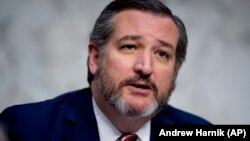 테드 크루즈 공화당 상원의원.