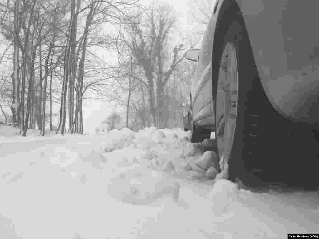 امریکہ کے شہر نیویارک میں برفانی ہوائیں چلنے کے ساتھ ساتھ ایک فٹ برفباری بھی ہوئی۔