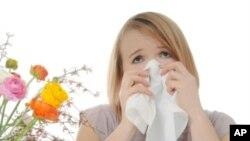 Глобалното затоплување – причина за пролетните алергии?