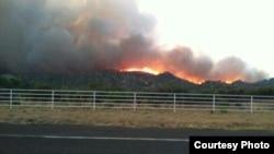 亞利桑那州亞內爾山一個鎮附近的火源。 (亞利桑那州立林業部門)