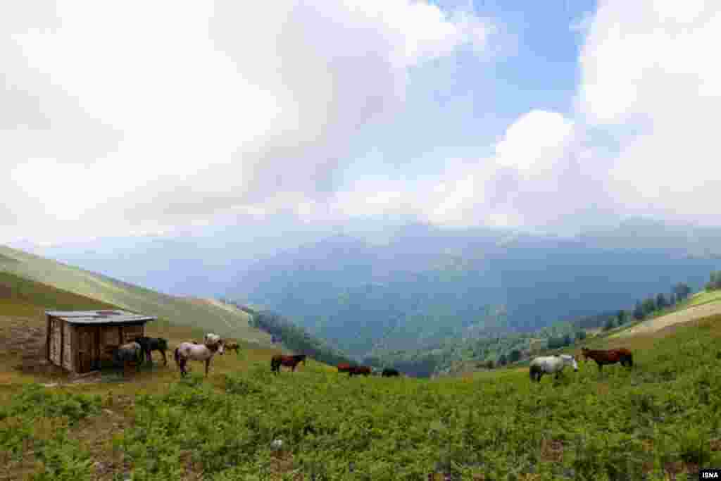 اولسبلنگاه ماسال در استان گیلان و در کنار کوههای تالش واقع شده است. عکس: پوریا پاکیزه