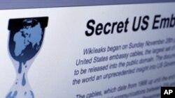 維基揭密網站。